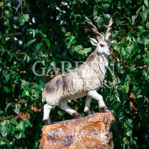 Горный козел фонтан