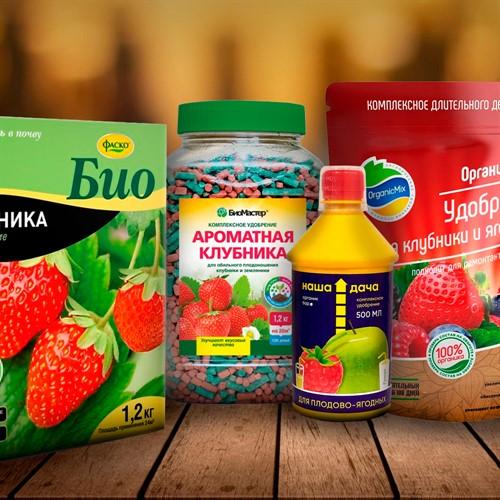 Удобрения для ягодных культур